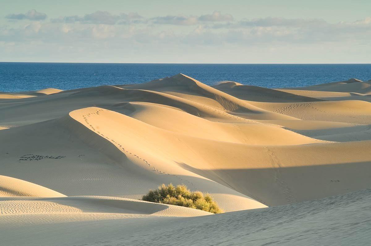 Dune Of Pilat And Banc Darguin Bordeaux Guide Hotels Bordeaux